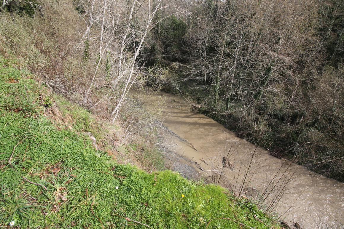 Price Creek