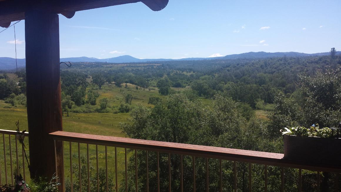 View from the house