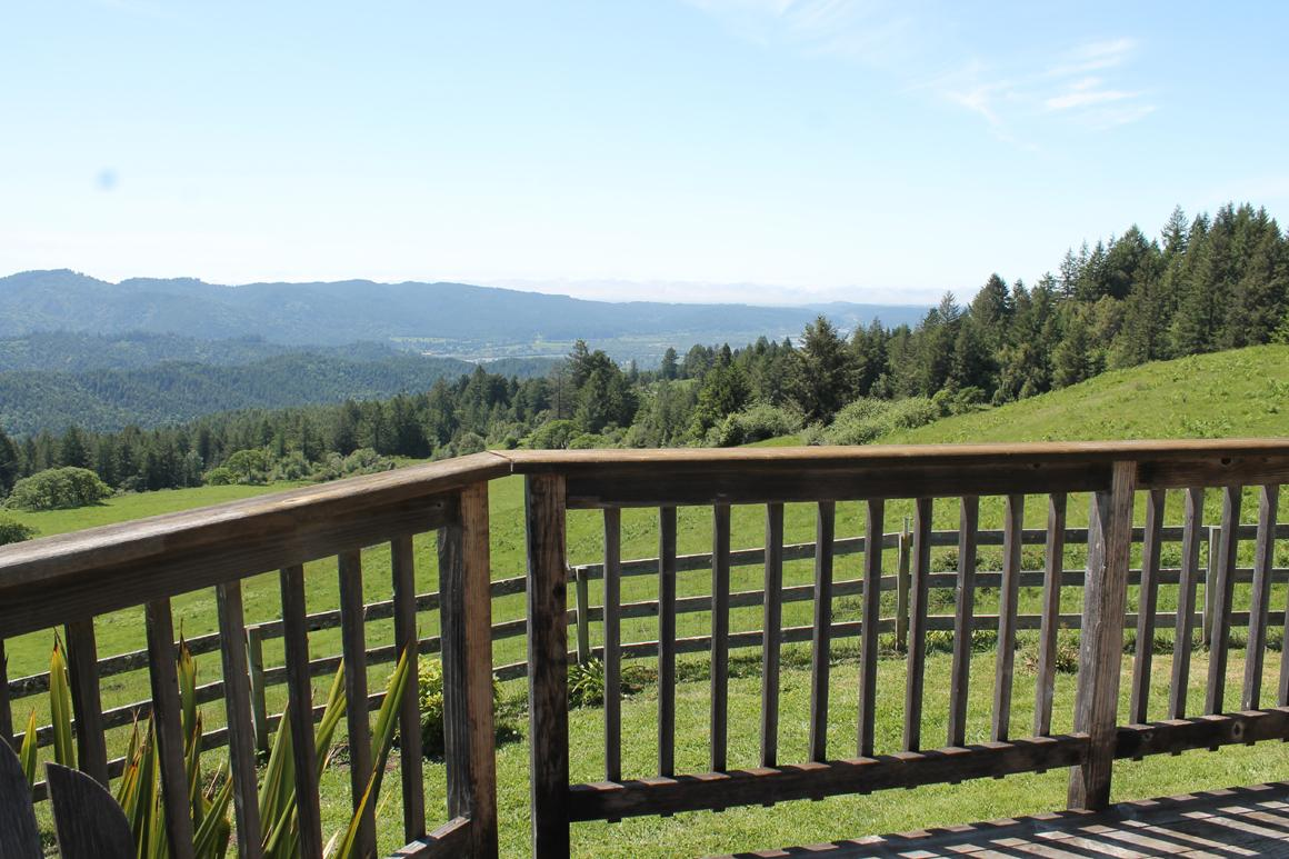 View from the deck