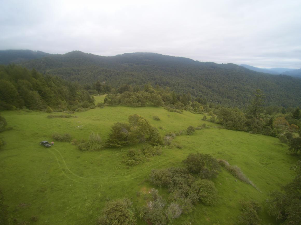 grasslands to hills