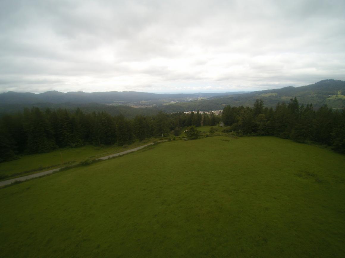 Open grasslands towards ocean view