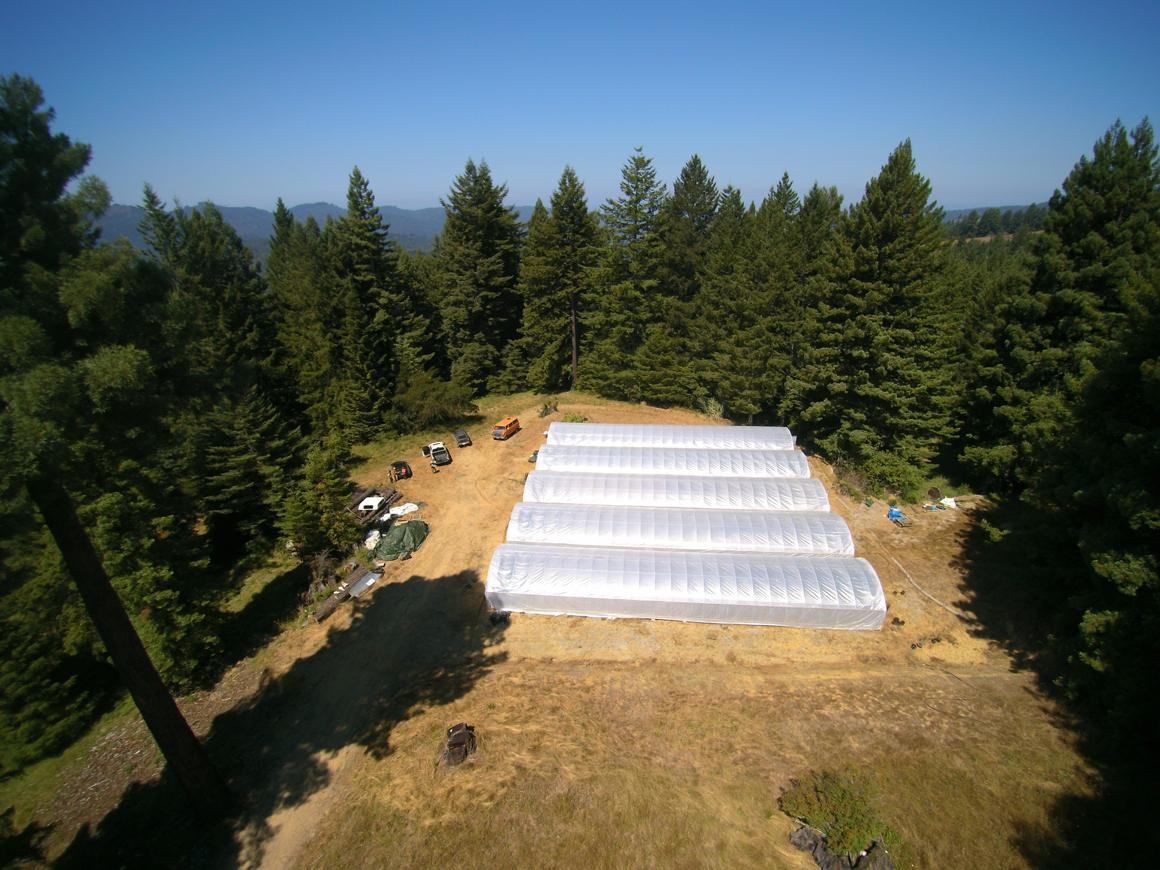 Closer view of greenhouses