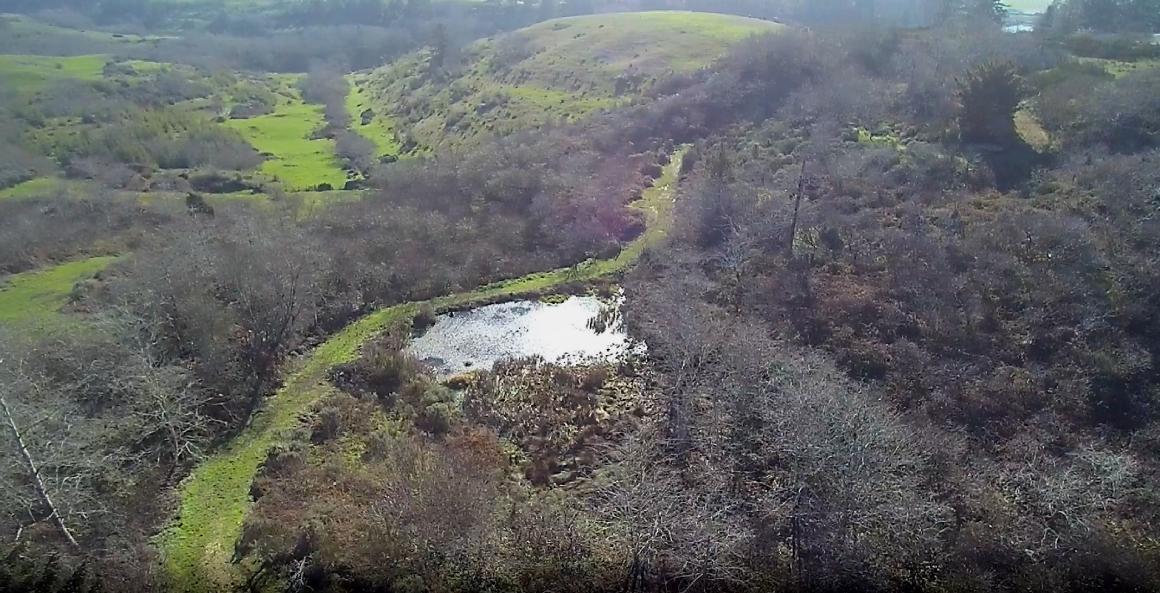 aerial to pond