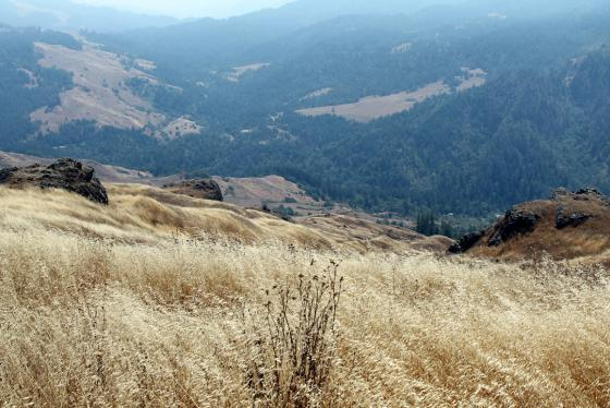 May Ranch