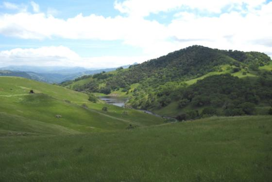 The beautiful RDR Ranch