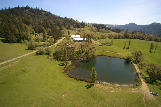 Aerial to house including pond